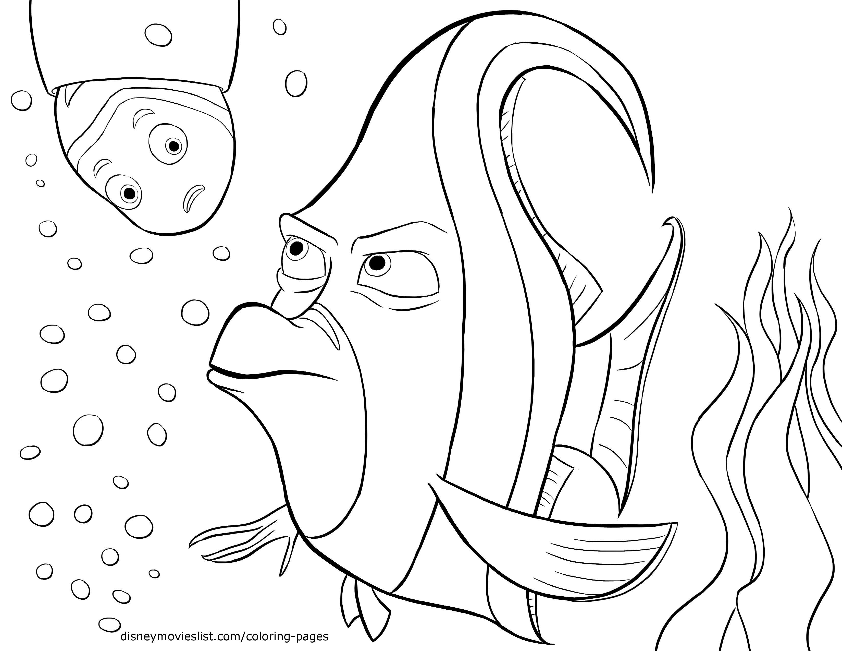 Gill a Nemo